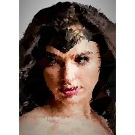 POLYamory - Wonder Woman, DC Comics - plakat Wymiar do wyboru: 20x30 cm